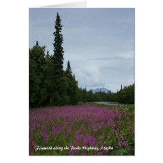 Fireweed along the Parks Highway, Alaska Card
