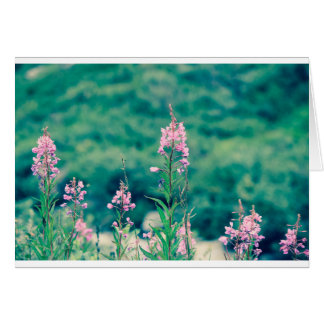 fireweed crossprocess card
