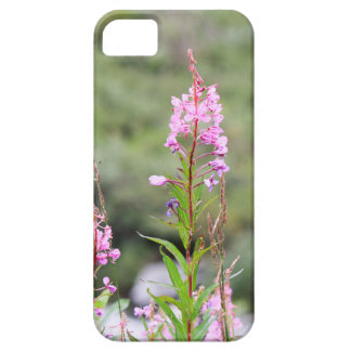 Fireweed iPhone 5 Cover