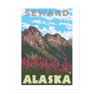 Fireweed & Mountains - Seward, Alaska Postcard