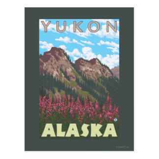 Fireweed & Mountains - Yukon, Alaska Postcard
