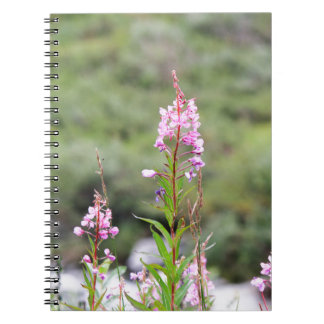 Fireweed Notebook