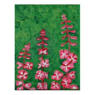 fireweed postcard