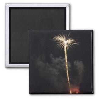 Fireworks Celebration at Night Magnets