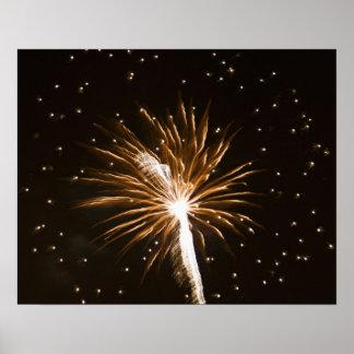 Fireworks display on Savannah River Poster