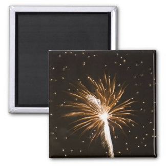 Fireworks display on Savannah River Square Magnet