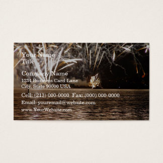 Fireworks explode over the Swan River Business Card