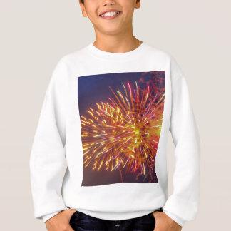 fireworks sweatshirt
