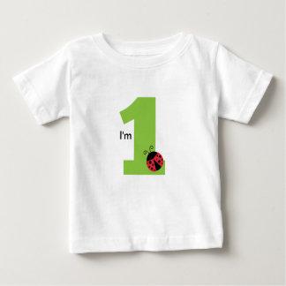 First Birthday, I'm One, Cute ladybug Baby T-Shirt
