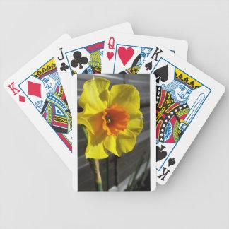 first daffodil poker deck