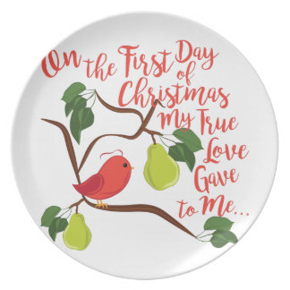 First Day Christmas Party Plates