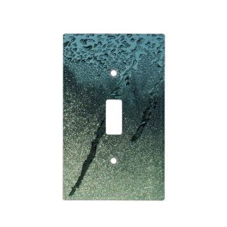 First Frost Photographic Art Light Switch Cover