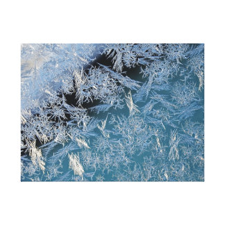 First Hard Frost Photographic Art Canvas Print