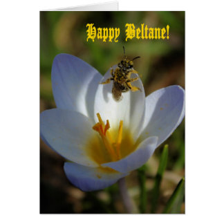 First Signs of Spring - Happy Beltane Card