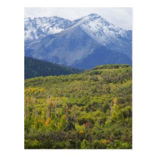 First Snow in Colorado's San Juan Mts. Postcard