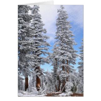 First Snowfall Card