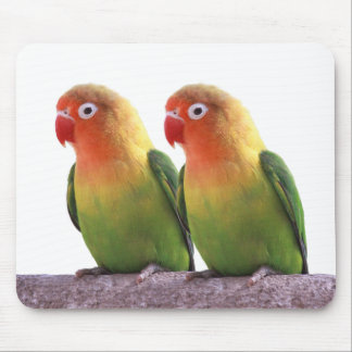 Fischer's Lovebird Mouse Pad