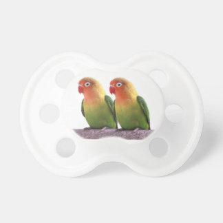Fischer's Lovebird Pacifier