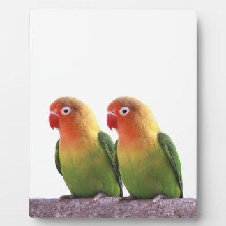 Fischer's Lovebird Plaque