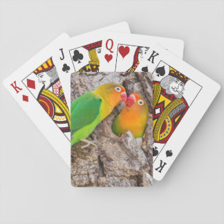 Fischer's Lovebirds kissing, Africa Playing Cards