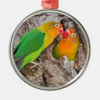 Fischer's Lovebirds kissing, Africa Silver-Colored Round Ornament