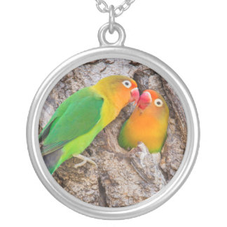 Fischer's Lovebirds kissing, Africa Silver Plated Necklace