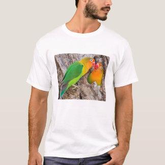 Fischer's Lovebirds kissing, Africa T-Shirt