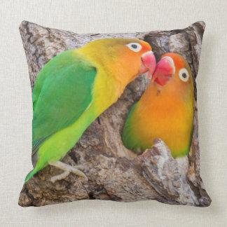 Fischer's Lovebirds kissing, Africa Throw Pillow