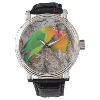 Fischer's Lovebirds kissing, Africa Wrist Watches
