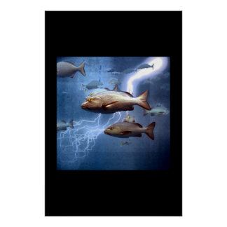 fish and lightning poster