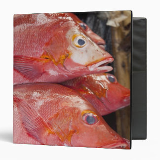 Fish at market, town of Kalabahi, Alor Island, Vinyl Binders