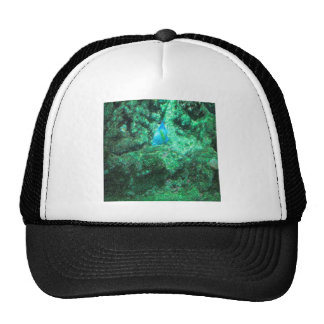 Fish Batman Trucker Hat