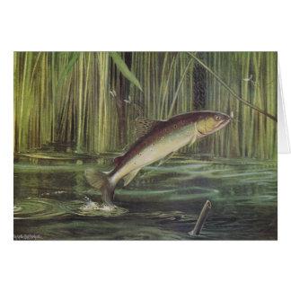 Fish - Brown Trout - Salmo trutta Card