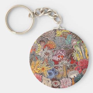 Fish clown and anemones keychain