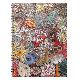 Fish clown and anemones notebook