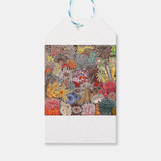 Fish clown and anemones pack of gift tags