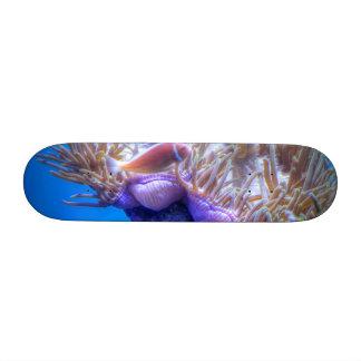 Fish Coral House Skateboard