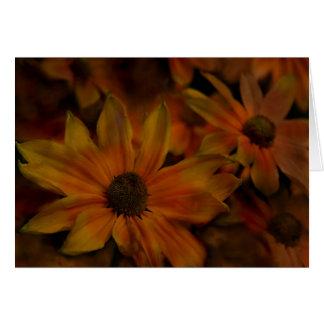 Fish Creek Blossoms Card