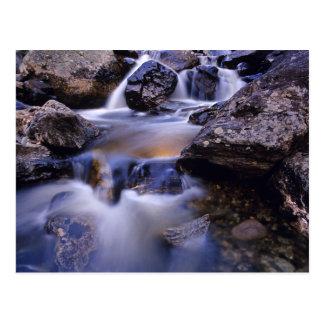 Fish Creek Falls near Steamboat Springs Colorado Postcard