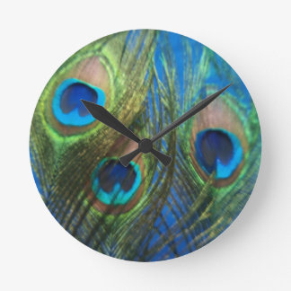 Fish Eye Peacock Still Life Round Clock