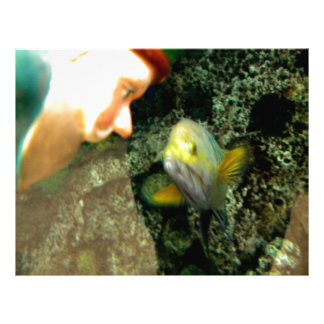 Fish Face gnome Letterhead Template