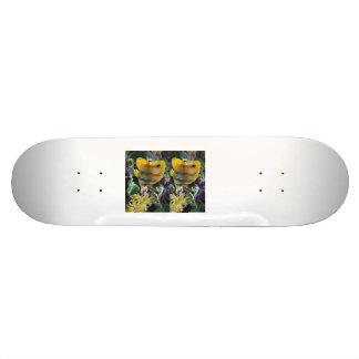Fish, Fish Skate Board