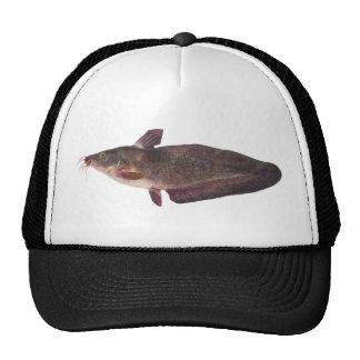 Fish - Freshwater Catfish - Tandanus tandanus Trucker Hats