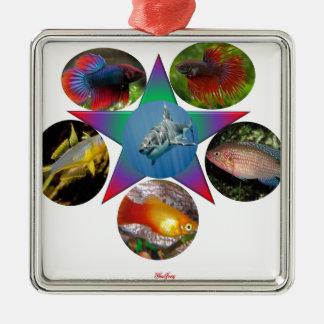 fish,goldfish,carp, fishing, sea, ocean, animal metal ornament