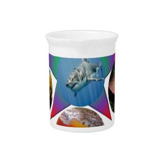 fish,goldfish,carp, fishing, sea, ocean, animal pitcher