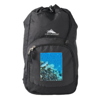 Fish moving over the reef backpack