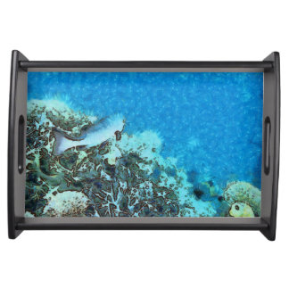 Fish moving over the reef serving tray