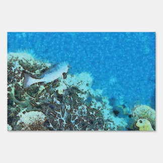 Fish moving over the reef sign