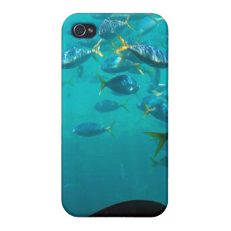 Fish of the Reef iPhone 5 Case