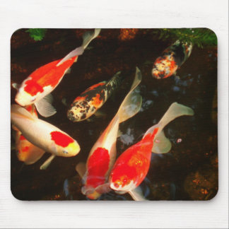 Fish on a Mouse Pad! Mouse Pad